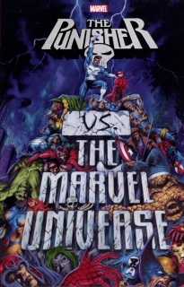 PUNISHER VS MARVEL UNIVERSE TP